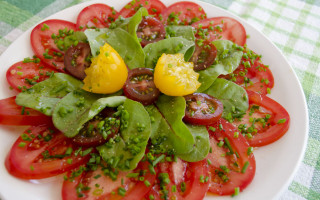 Simple but beautiful tomato sallad